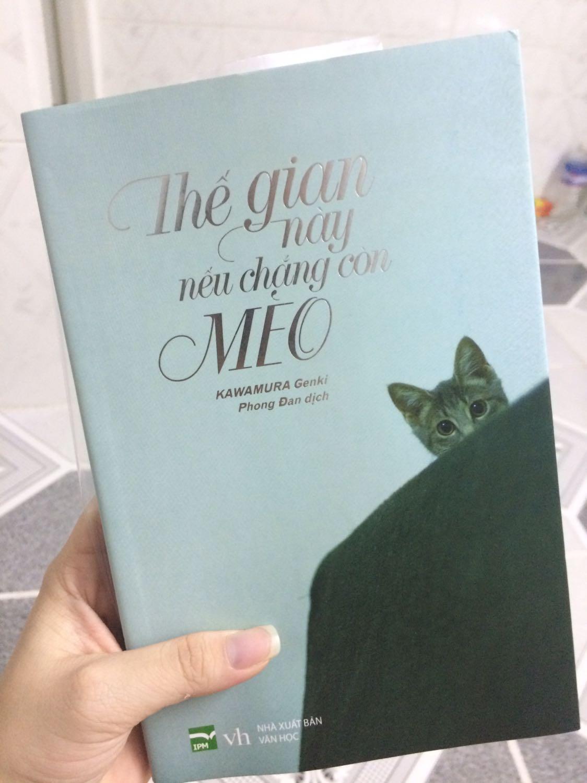 Nếu Chẳng Còn Mèo